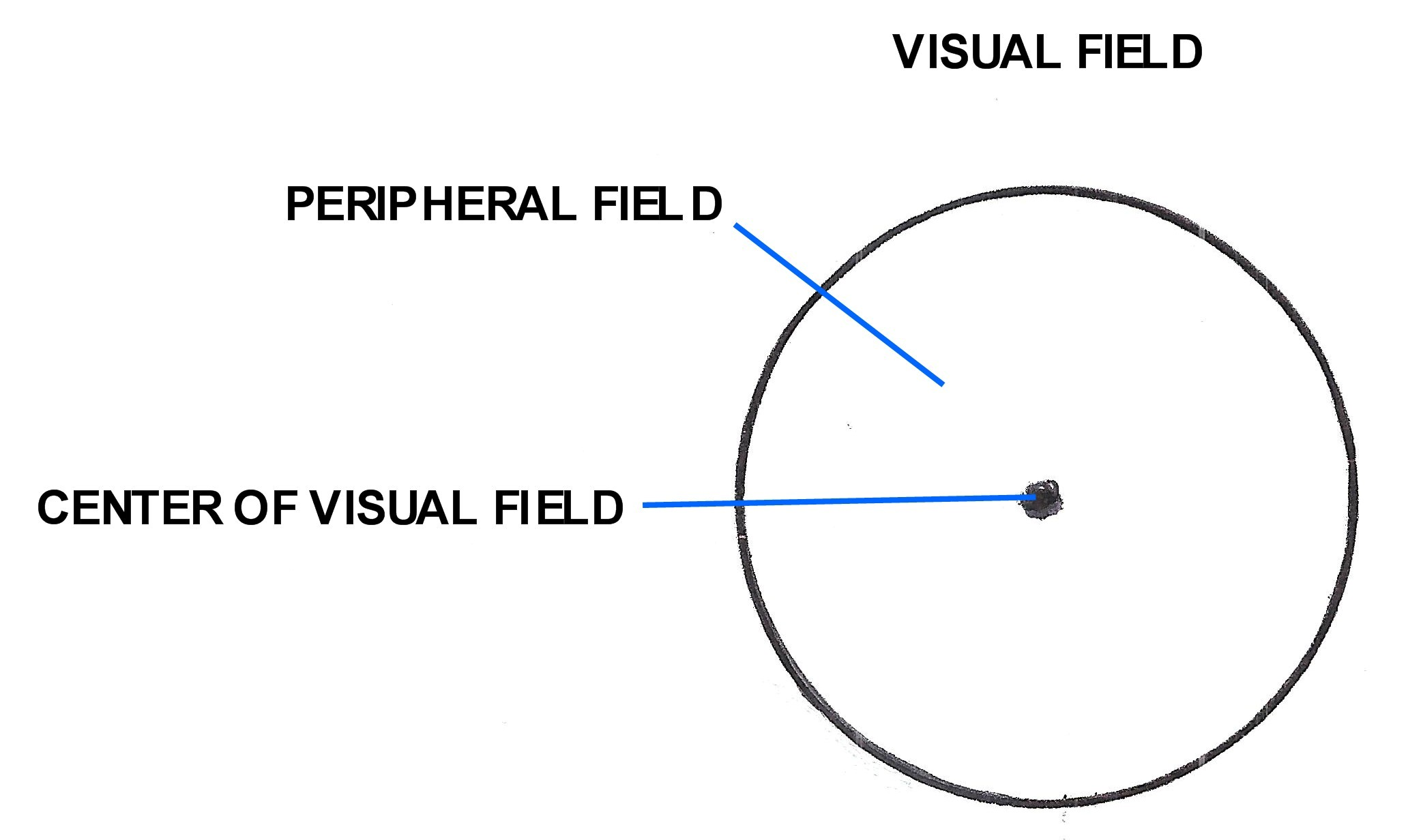 CENTER OF THE VISUAL FIELD
