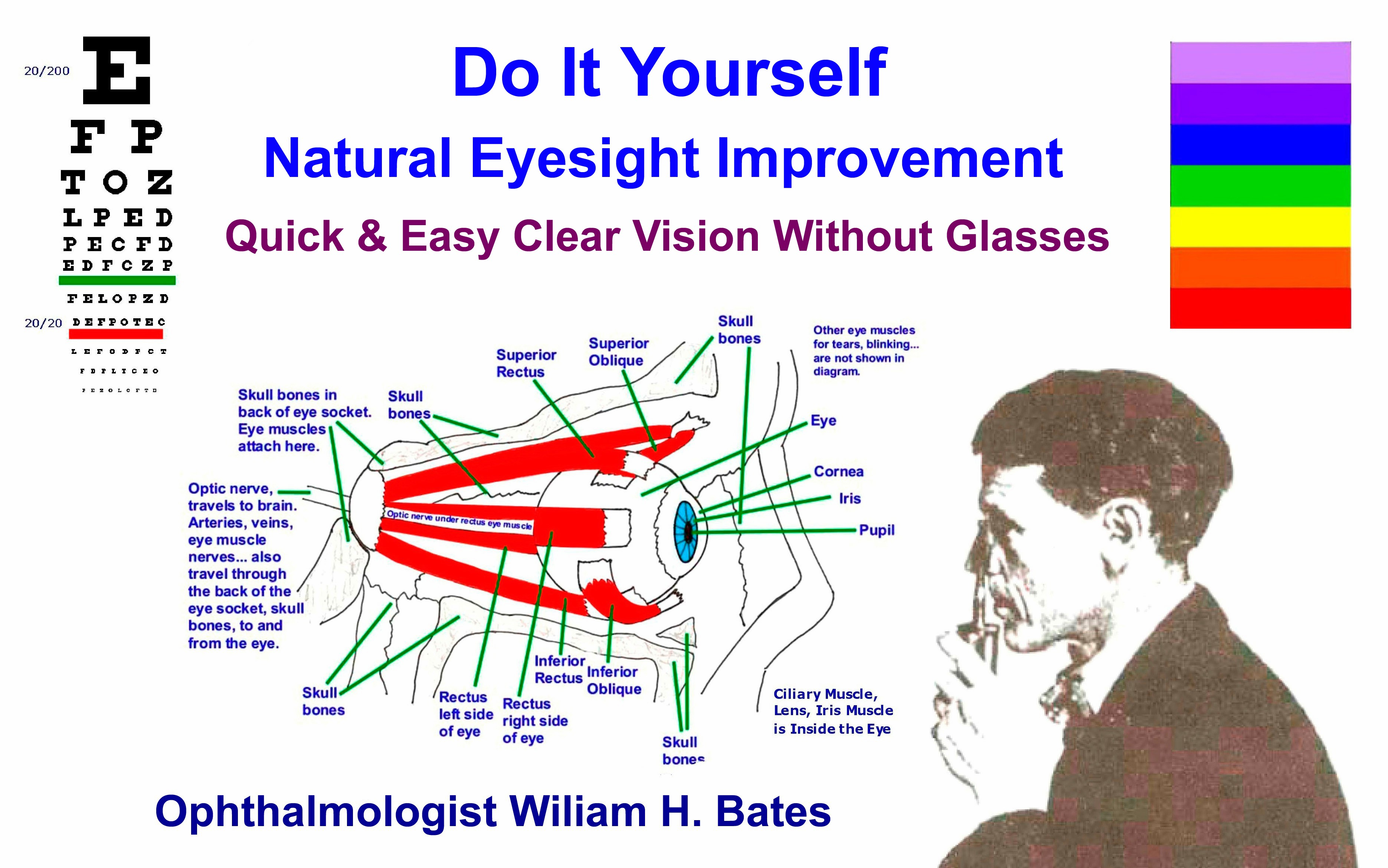 Ophthalmologist Bates Inspecting the Refraction of Light Rays in the Eye